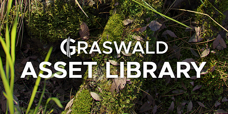 Graswald - Asset Library