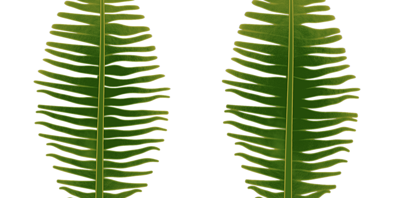 Coconut Tree Leaves - Procedural